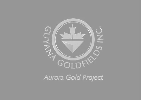 Goldfield 3d logo, branding, marketing, advertising, Toronto, Greater Toronto Area, GTA, Stouffville, York Region, Aurora, Newmarket, Markham, Richmond Hill, Ontario