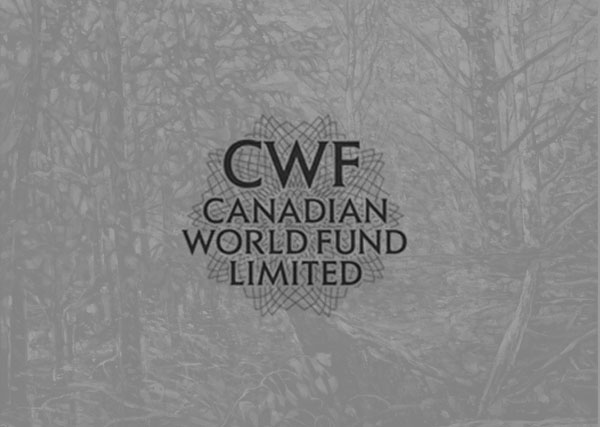 Canadian World Fund Limited print, graphic design, branding, marketing, advertising, Toronto, Greater Toronto Area, GTA, Stouffville, York Region, Aurora, Newmarket, Markham, Richmond Hill, Ontario